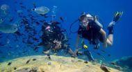 St. Elias Resort - Umgebung - Poseidon Dive Centre